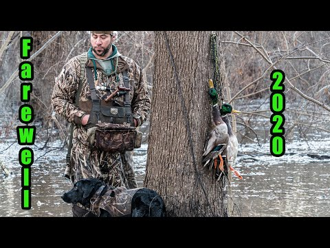 THE LAST FEW TIMES OUT | DOGS, DUCKCALLS, GREENHEADS, AND GOOD FRIENDS.