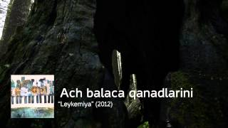 """Qaraqan - Aç Balaca Qanadlarını. """"Leykemiya"""" (2012)"""