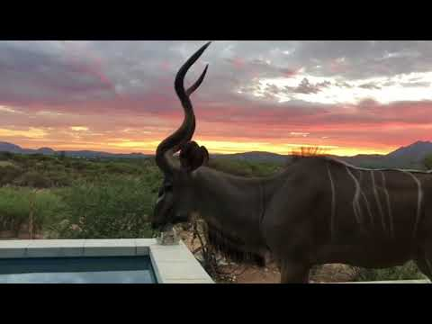 Namibia - the beautiful countryside and wildlife