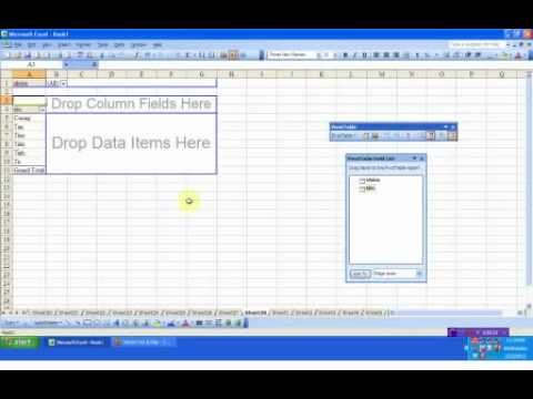 Sử dụng bộ lọc PivotTable trong Excel ( filter PivotTable of excel ) .flv