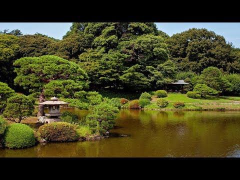 Beautiful Japanese Music - Garden of Peace