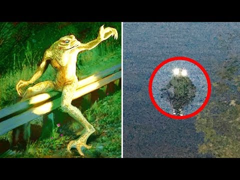 The Mystery Of The Loveland Frogman | Sightings & Encounters