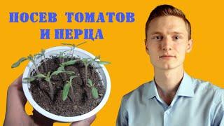 видео Основной посев томатов на рассаду для теплицы. Сорта томатов. Посадки 2012.