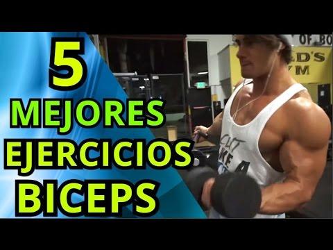 LOS 5 MEJORES EJERCICIOS PARA BICEPS
