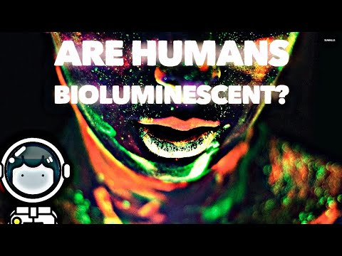 Are Humans Bioluminescent? 💫
