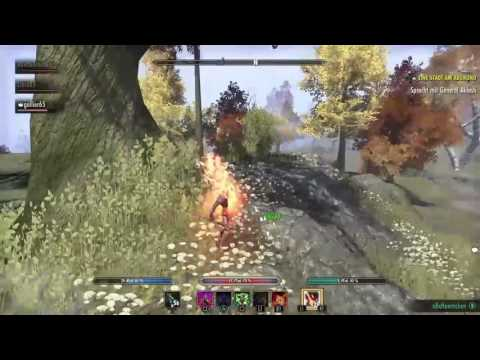 Warden H Pvp Build Eso
