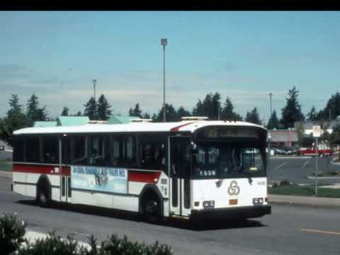 THE BUSES OF TRIMET - YouTube