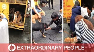 DOGS RESCUED FROM MEAT INDUSTRY