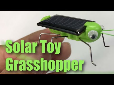 Solar powered grasshopper children learning toy review youtube solar powered grasshopper children learning toy review solutioingenieria Choice Image