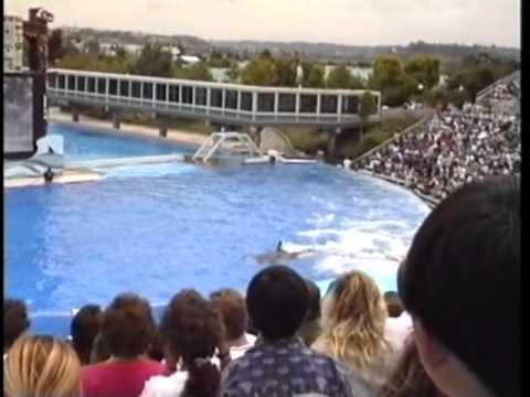 Sea World 1991