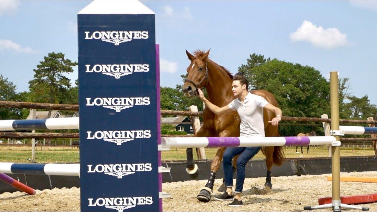 dressage-horse-tries-free-jumping-matt-harnacke