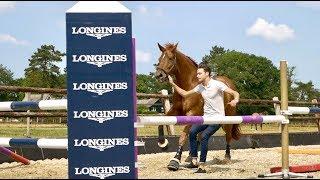 DRESSAGE HORSE TRIES FREE JUMPING|| MATT HARNACKE