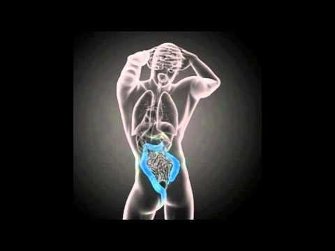 hqdefault - Severe Lower Back Pain Pancreas