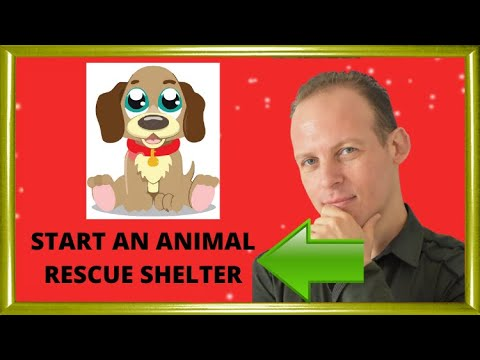 How to plan start and open an animal rescue shelter