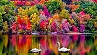 os lugares mais bonitos do mundo #5