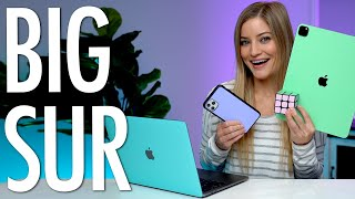 Top 5 Mac OS Big Sur Feature!