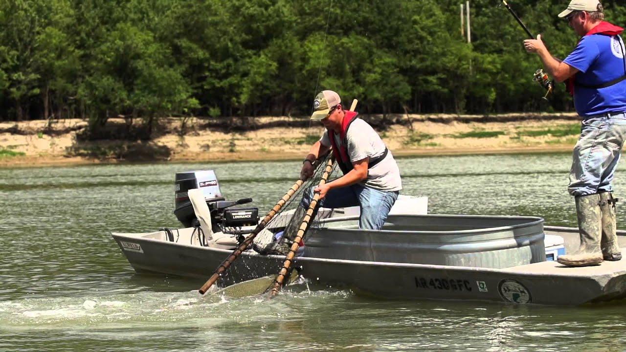 Arkansas alligator gar youtube for Arkansas game and fish fishing report