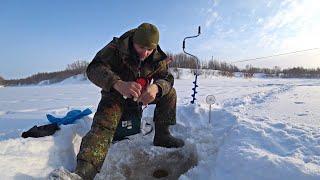 Нашел ту самую лунку Столько окуня мне хватит Рыбалка по льду