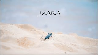 JUARA: A Sea Turtle Conservation Documentary