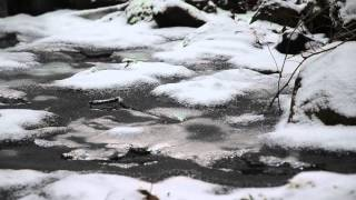 Water flowing under ice (status update)