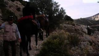 Rando a cheval dans les corbieres 2009