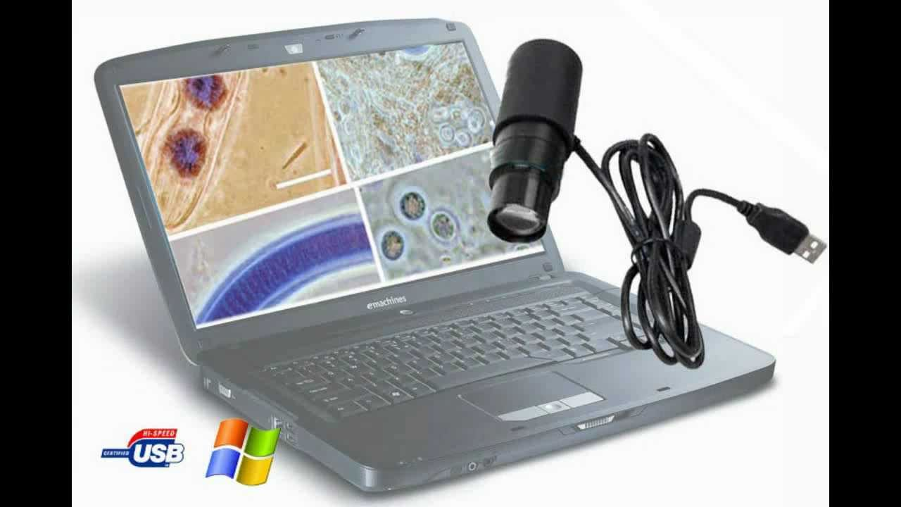 Microscope set 40 x 1024 x usb microscopio digital usb youtube