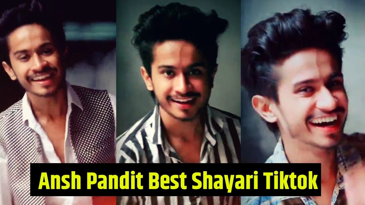 Ansh Pandit Tiktok New Shayari Videos 2019-20|STATUSBOY.COM|