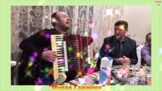 Аварские песни на баяне Мурада Гаджиева