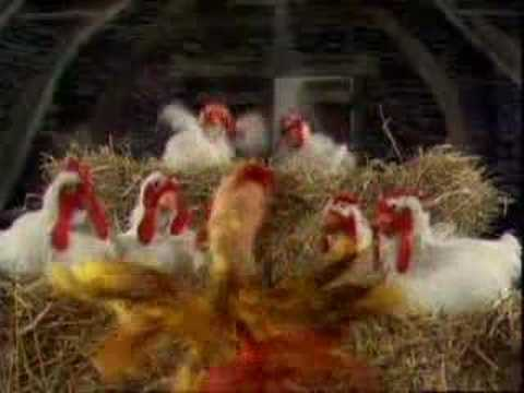 The Muppet Chickens sing Baby Face