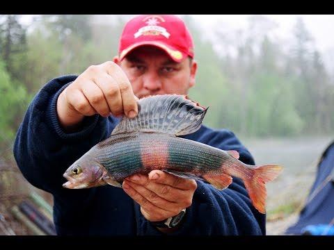 весна рыбалка река