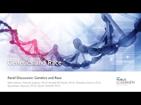 Public Classroom 3: Genetics and Race - Panel Discussion