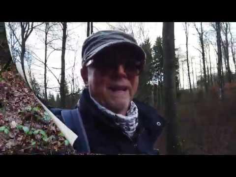 (Film 10) Rundwanderweg 01 in Oberkirchen, Sauerland