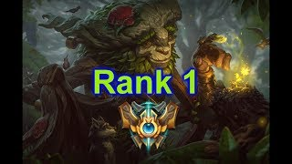 How an Ivern main Hits rank 1 in NA