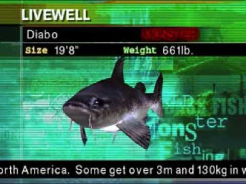 Fisherman's bait 2: big ol' bass details launchbox games database.