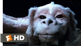 the neverending story 410 movie clip falkor the luck dragon 1984 hd