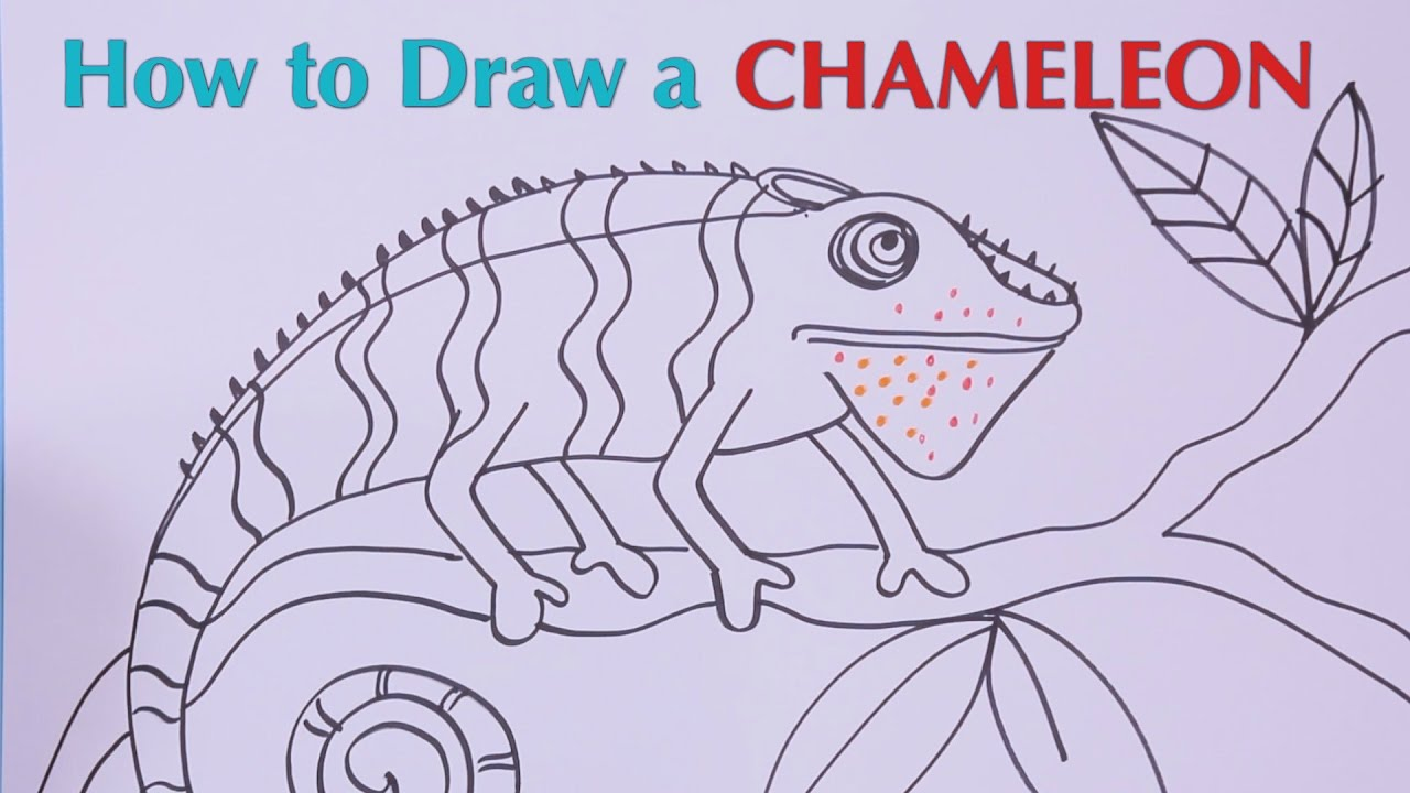 how to draw a chameleon great artist mom guided drawing youtube