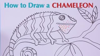 How to Draw a Chameleon - Great Artist Mom - Guided Drawing