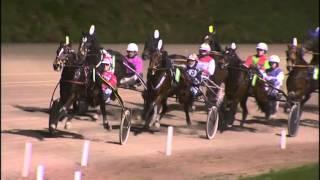 Vidéo de la course PMU PRIX TOPKIP.NL