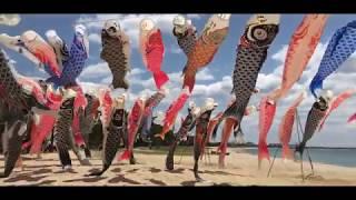 """虹の鯉のぼりプロジェクト x ニジマル2019 """"Koinobori"""" Niji Maru"""""""