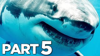 ELDER SHARK VS GREAT WHITE SHARK in MANEATER Walkthrough Gameplay Part 5 (FULL GAME)