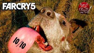 Far Cry 5 - ВЕДЬМАК ОТ МИРА UBISOFT [Обзор]