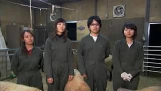 麻布大学 研究室紹介31_動物行動管理学研究室