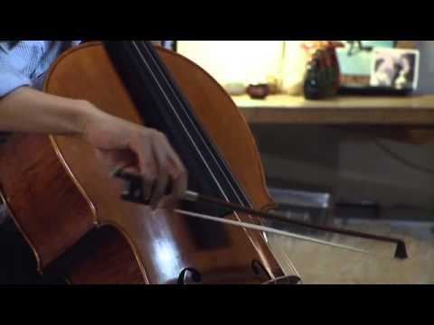 "Moondog Lament I, ""Bird's Lament"" on cello"
