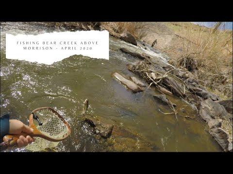 Small Stream, Light Rod, BIG Fun - Fly Fishing Bear Creek Above Morrison - April 2020