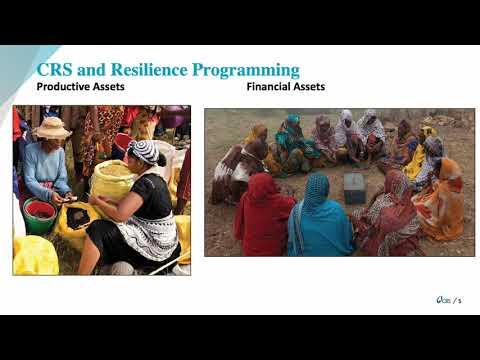 Lightning Talk - Resilience Programming at CRS