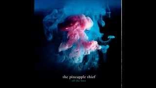 The Pineapple Thief - Build A World + Lyrics