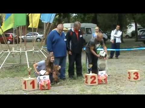 """Победители Беста Щенков 05 09 2010г  выставка """"Рибо"""" г Луганск."""