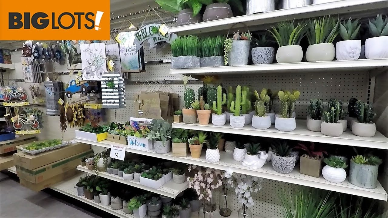 Big Lots Spring Home Decor Shop With Me Shopping Store