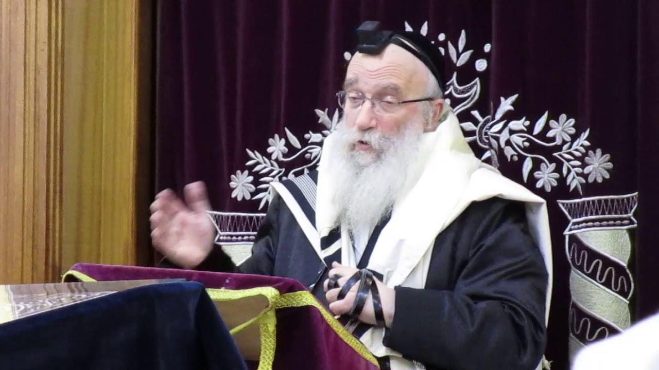 הרב שמואל אליעזר שטרן - אם לא עשה הפרשת חלה למצה לא יאכלנה