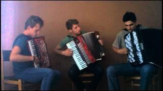 Crazy Accordion Trio - La Valse Des Monsters